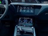 奥迪 e-tron 2019款 奥迪 e-tron 2019款 55 quattro技术型-第4张图